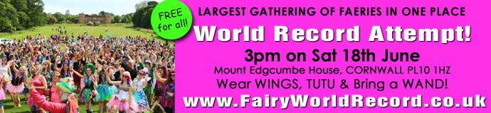 Fairy World Record Attempt!