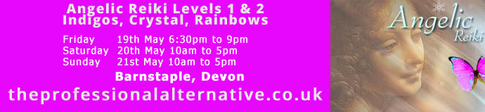 Angelic Reiki Levels 1 & 2 including Indigos