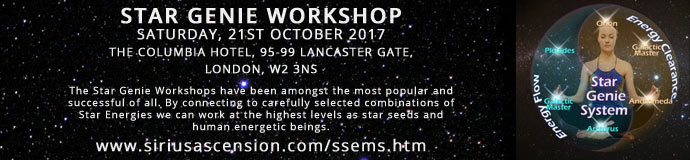 Star Genie Workshop