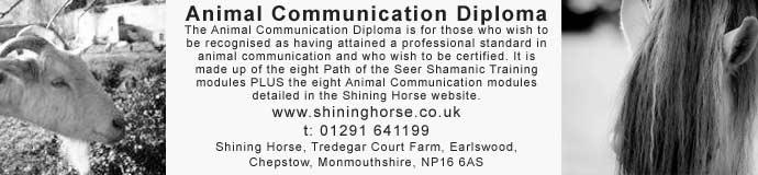 Animal Communication Diploma
