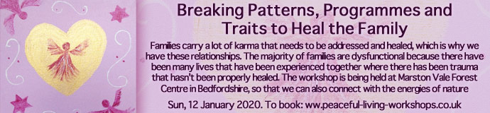 Breaking Patterns, Programmes and Traits to Heal the Family