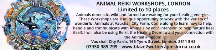 Animal REIKI Level 1