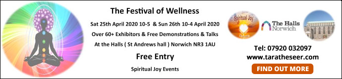 Festival of wellness